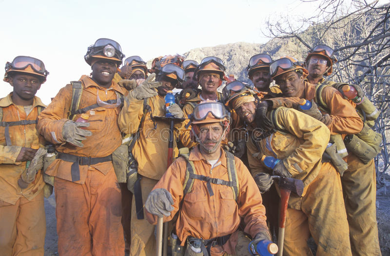 Download Fire fighting crew editorial stock image. Image of forest - 26272724