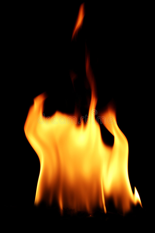Fire flame. In black background stock images