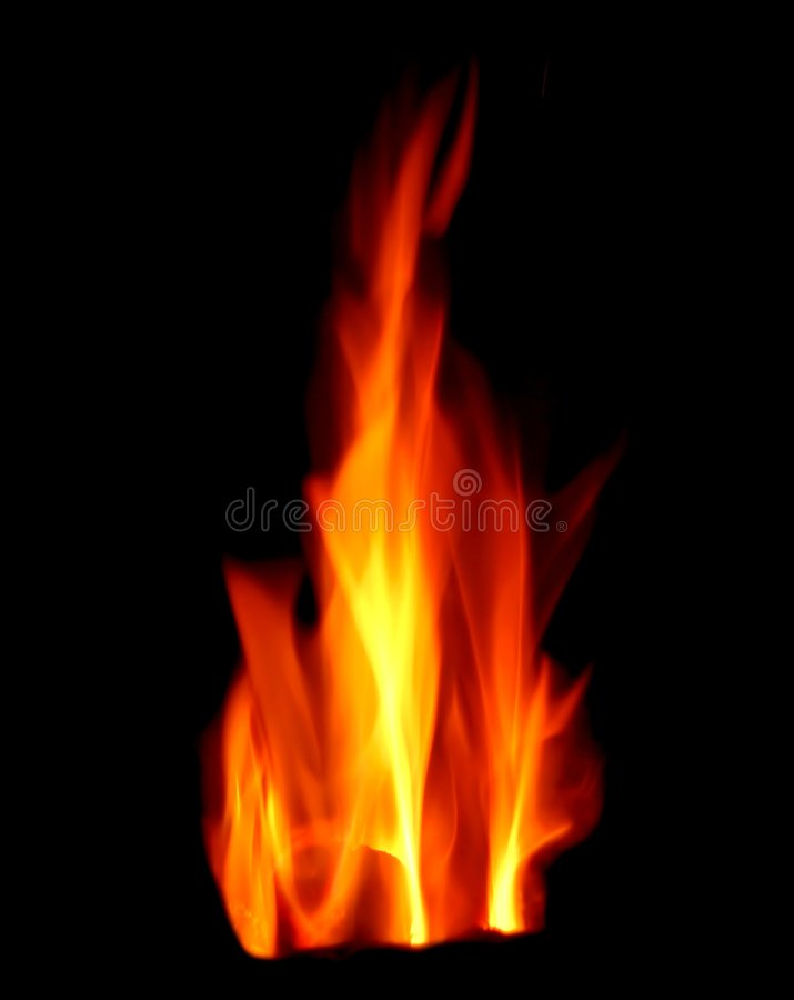 Fire flame. Bright fire flame on the black background