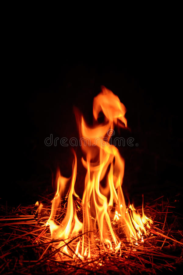 Download Fire flame stock photo. Image of closeup, decoration - 96824262