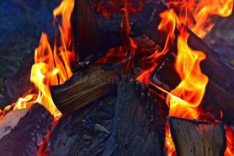 Fire, Flame, Heat, Campfire stock image