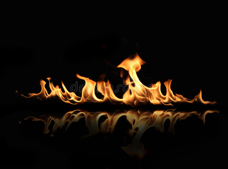 Fire flames. On a black background stock image