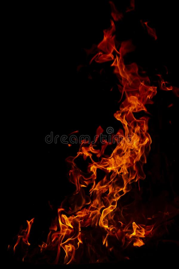 Fire flames on Abstract art black background texture, Burning red hot sparks rise from large fire in, Fiery orange glowing. Fire flames on Abstract art black royalty free stock image