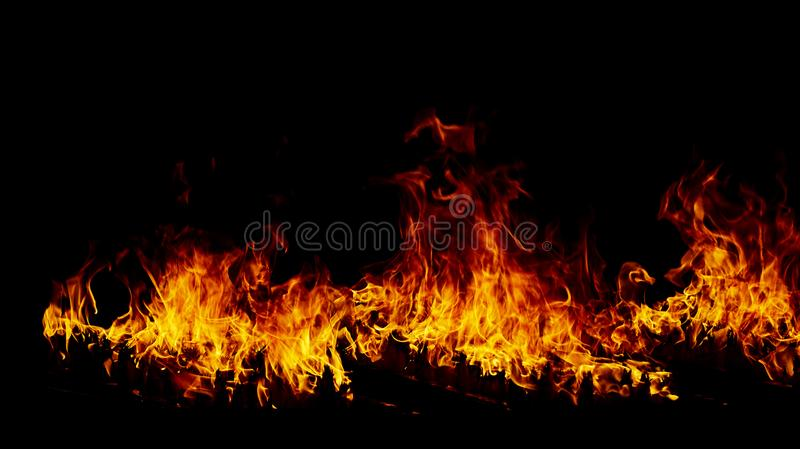 Fire flames on a black royalty free stock photography