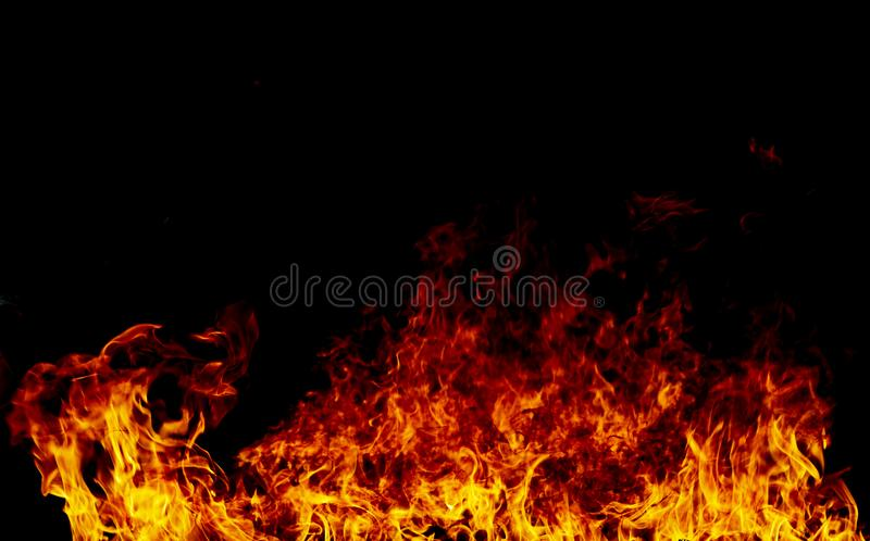 Fire flames on a black royalty free stock images