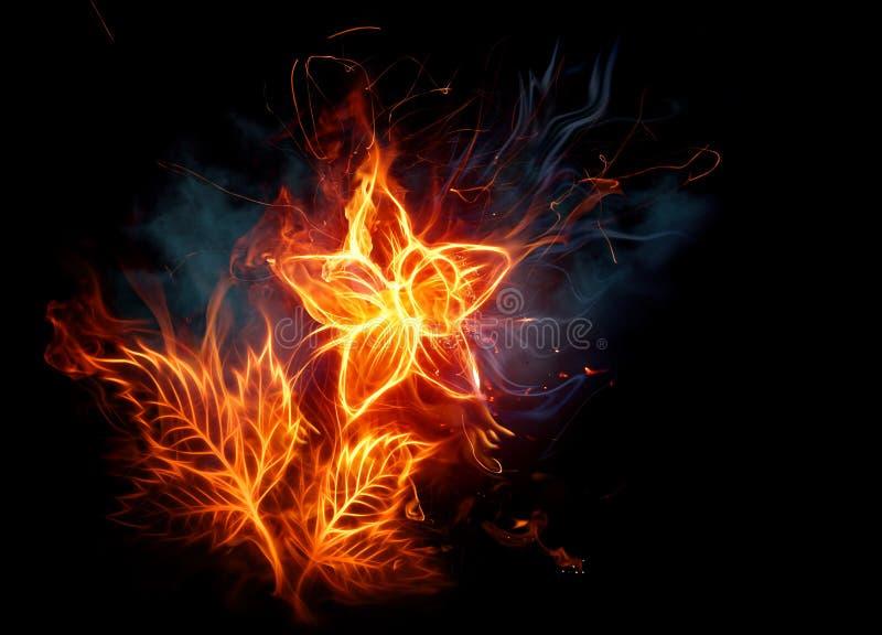 Fire flower royalty free illustration