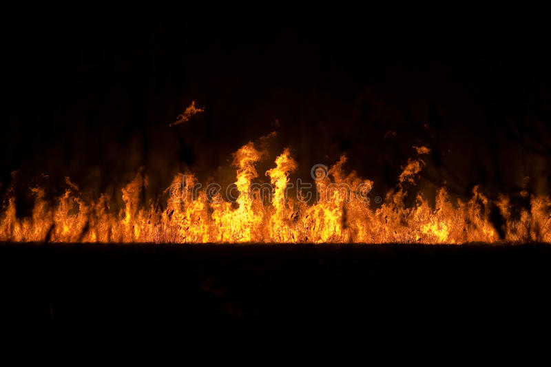 Fire on the ground. Dangerous fire with big flames on the field royalty free stock photos