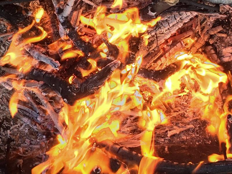 Fire, hot flame, burning wood, colorful texture, warm background. Picnic in the garden stock images