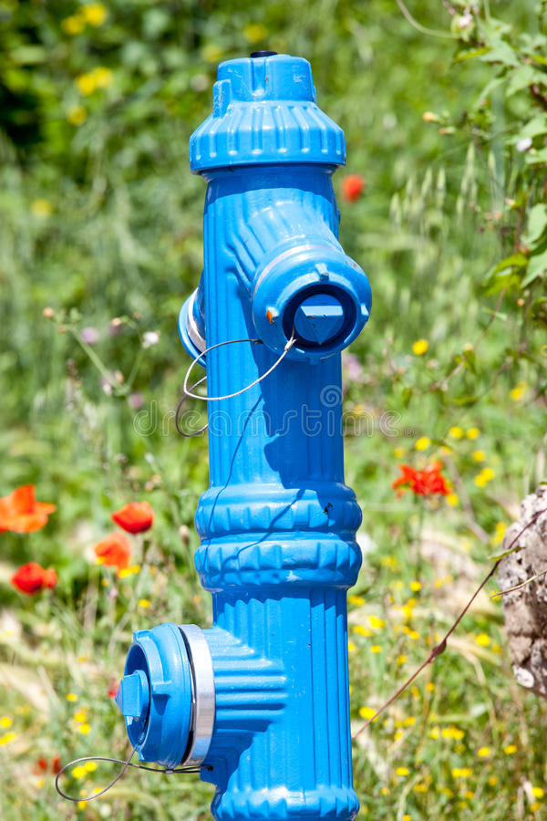Fire hydrant in nature royalty free stock images