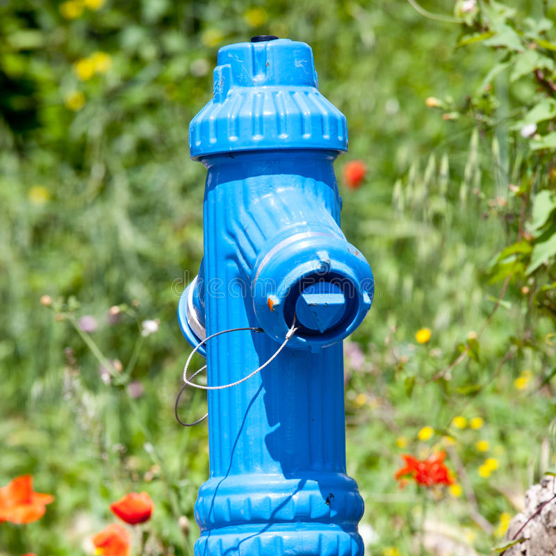 Fire hydrant in nature royalty free stock photography