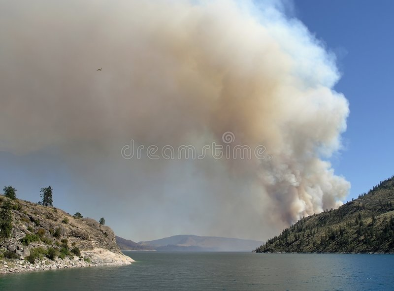 Download Fire by the Lake stock image. Image of brown, firefighter - 168859