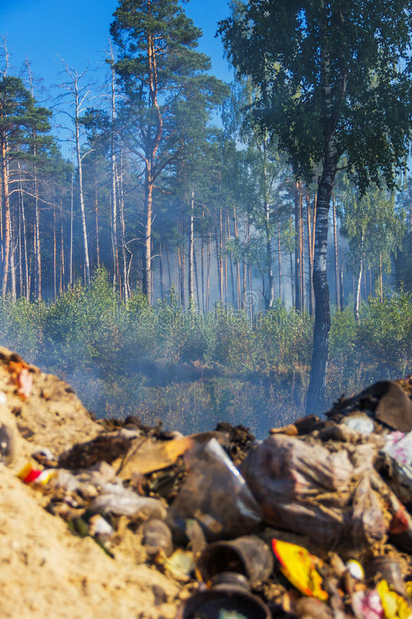 The fire from the landfill has spread to the forest royalty free stock photography