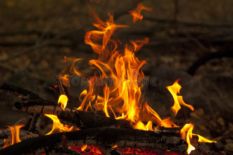 Fire outdoor 1. A camp fire burning, outdoor night scene stock photography