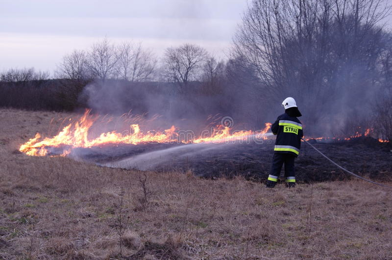 Fire. The photo shows a fire. We see the burning dry grass and firefighters carrying fire-fighting. Above the ground rises smoke royalty free stock images