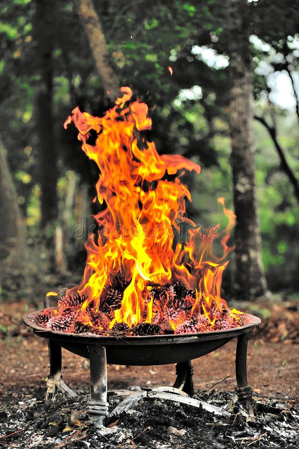 Fire Pit. Campground fire pit with burning pine cones royalty free stock photos