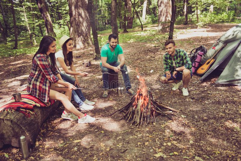 Fire place, four cheerful serene tourists are sitting around, roasting the marshmallows, nice sunny day, campsite stock images