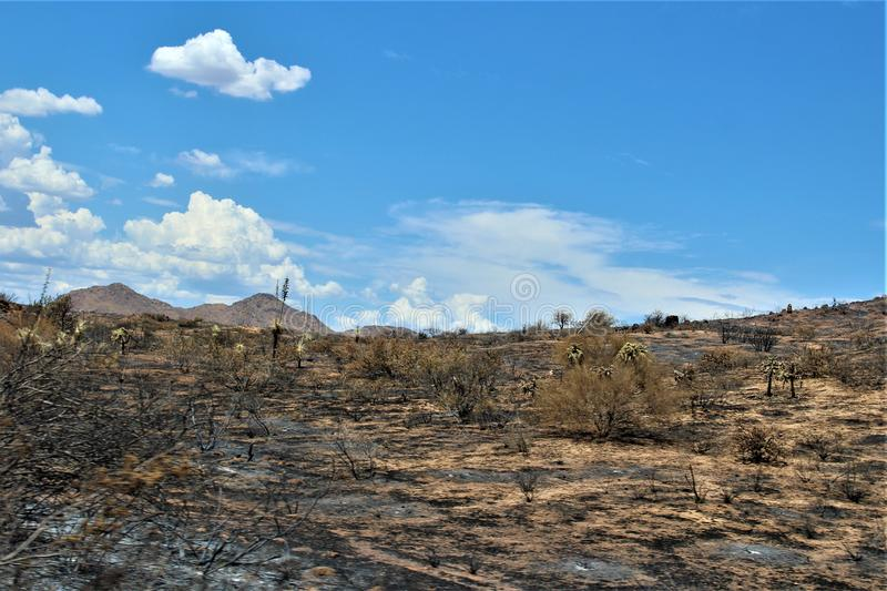 Mountain Fire at Bartlett Lake Reservoir, Tonto National Forest, Maricopa County, State of Arizona, United States. Fire remains at Mountain Fire and scenic stock image