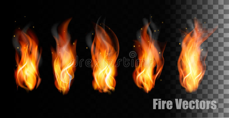 Fire s on transparent background. vector illustration