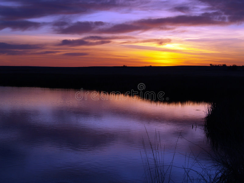 Download Fire in the Sky stock image. Image of pond, sunrise, marsh - 2250541