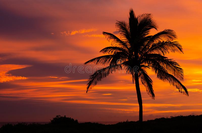 FIRE IN THE SKY 05. A spectacular sunrise at Durban`s South Beach lights up the sky in surreal colours royalty free stock photos