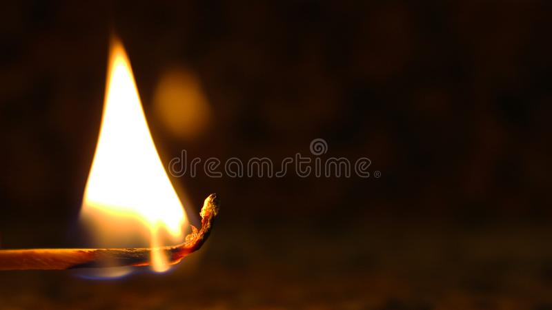 The Fire Stick royalty free stock image