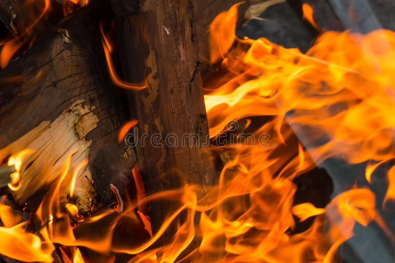 Fire texture close-up background burning log vertical design bright with long tongues sparks royalty free stock images