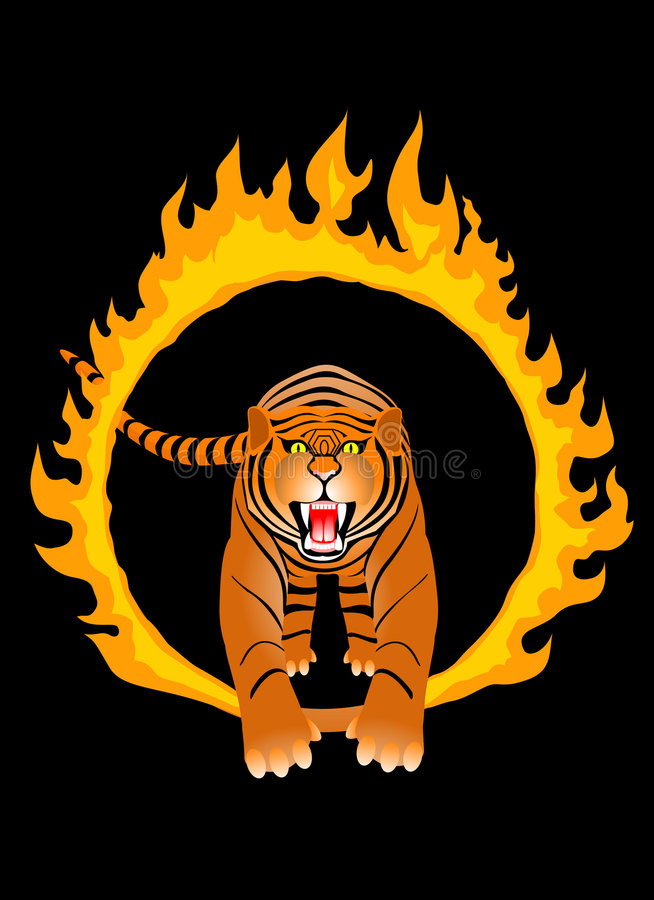 Fire tiger royalty free stock images