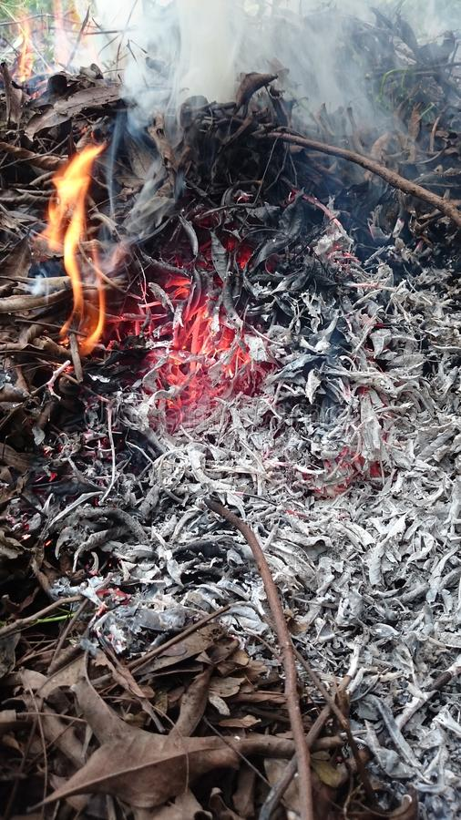 Fire trash photo. On makro focus photography royalty free stock image
