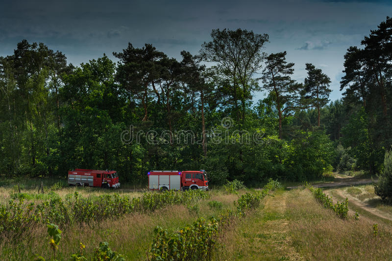 Fire trucks going to extinguish forest royalty free stock images