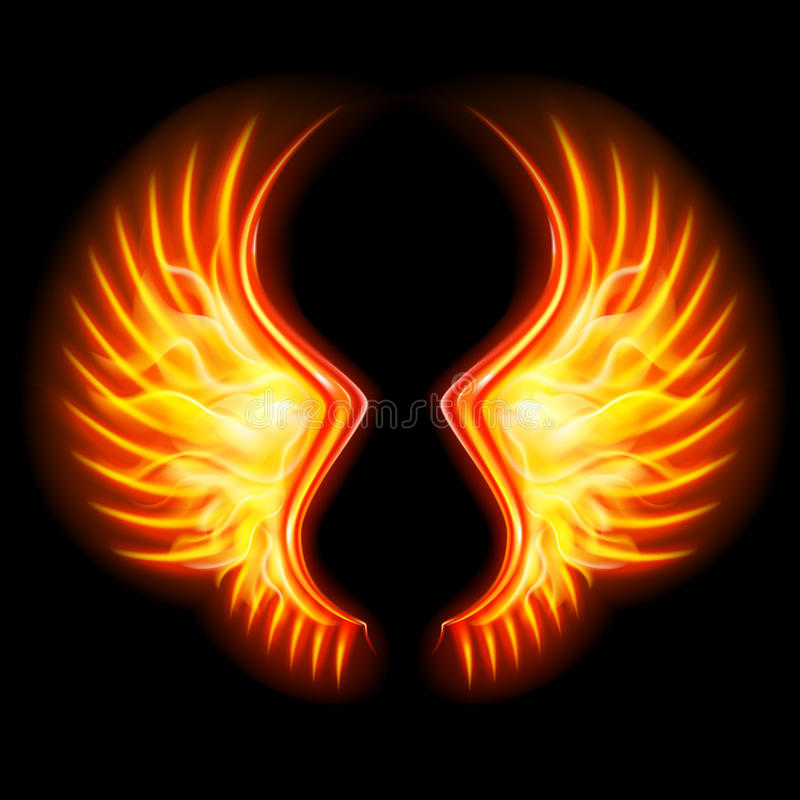 Fire Wings stock vector. Image of nobody, abstract, flight ...