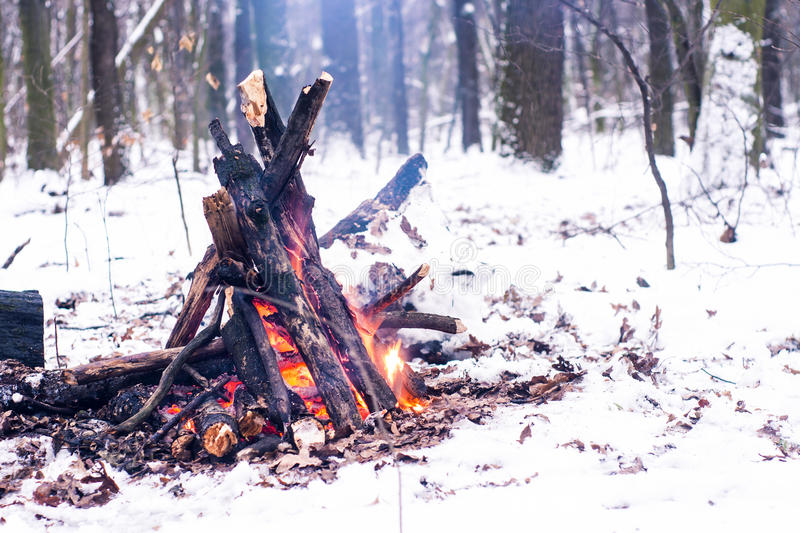 Fire in the winter forest. Couple in love near the fire, winter, snow stock image