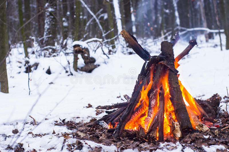 Fire in the winter forest. Couple in love near the fire, winter, snow stock photography