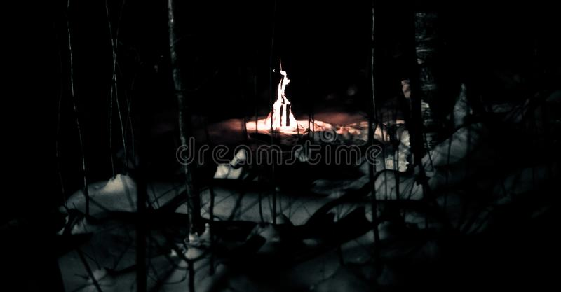 Fire in the winter forest at night stock photos