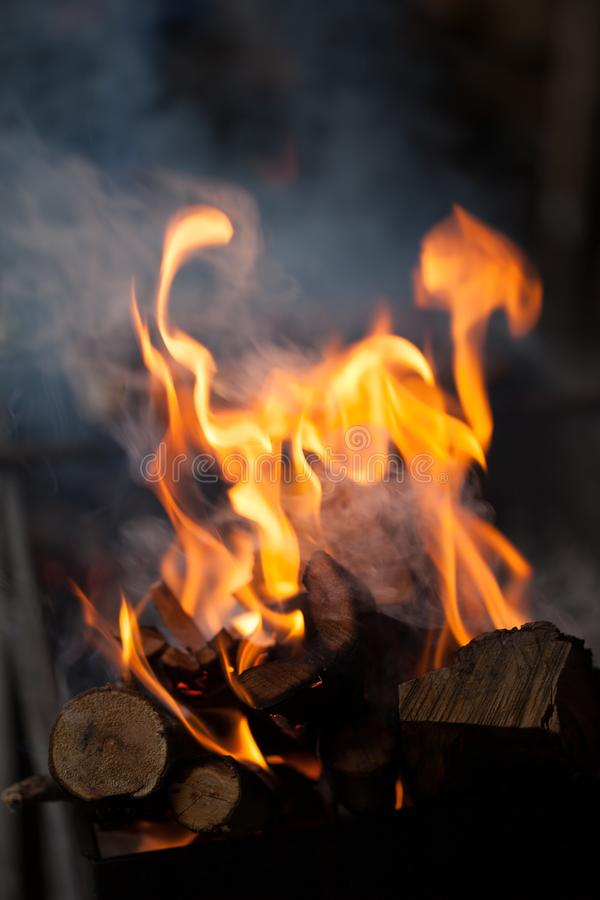 Free Fire With Charcoals. Burning Wood. Macro. Live Flames With Smoke. Wood With Flame For Barbecue And Cooking Bbq. Stock Images - 125422404