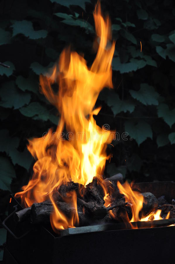 Fire of wood royalty free stock photo