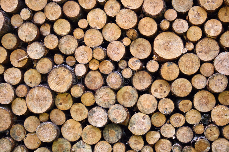 Fire wood. Greater woodpile from dry round fire wood stock images