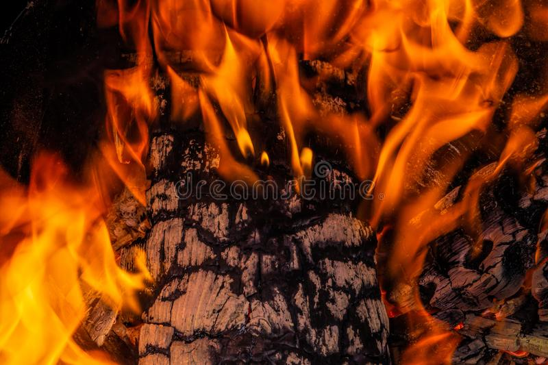 Fire. Wood burning in the fire. Burning coals. stock photos