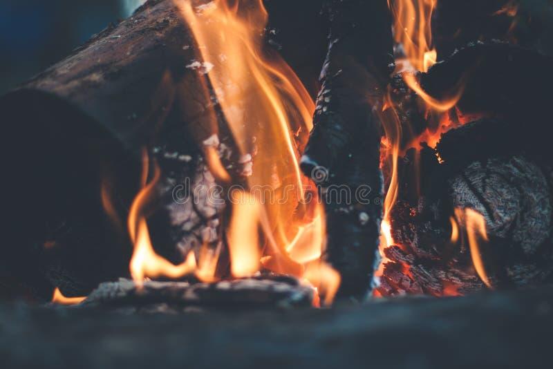 Fire Wood Burning Free Public Domain Cc0 Image