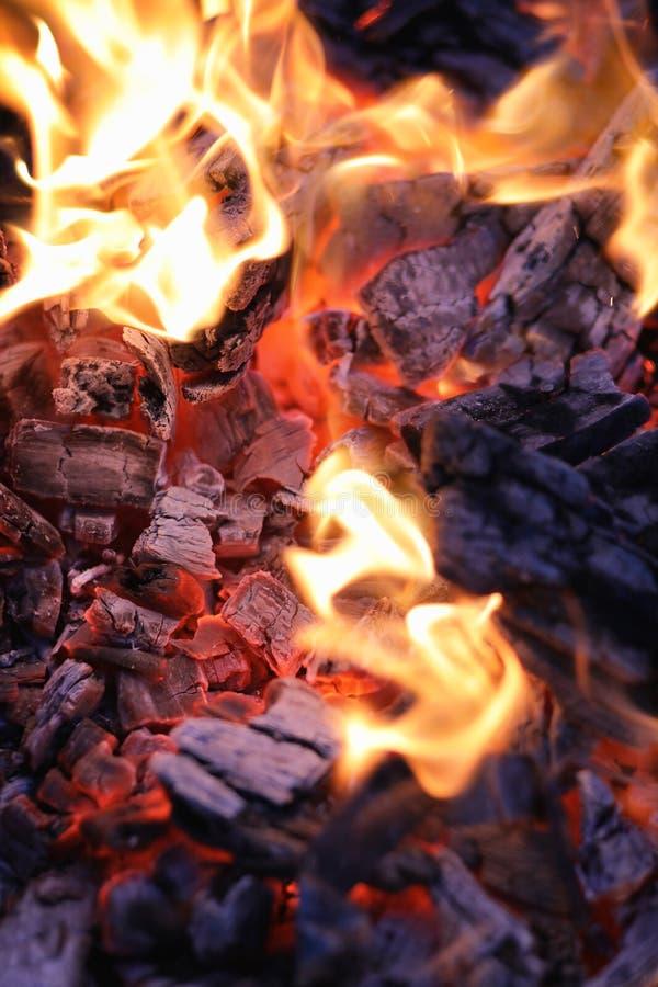 Fire wood coal amber ash closeup. Fire wood coal and amber ash closeup royalty free stock image