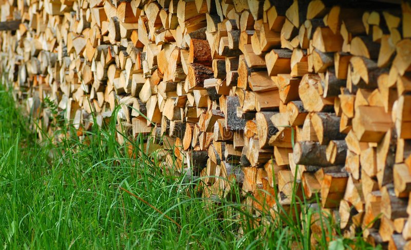 Download Fire woods stock image. Image of lumber, tree, forest - 6636823