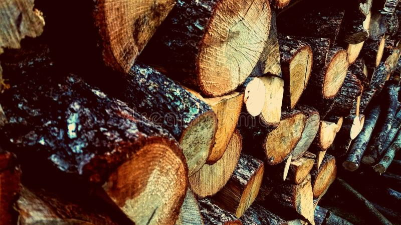 Fire-woods royalty free stock image