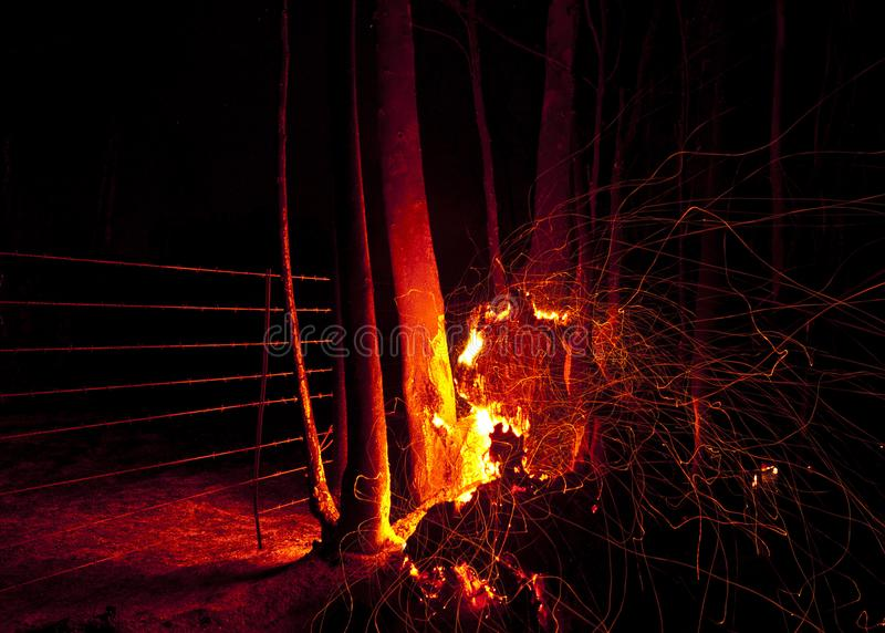 Night fury. The sparks of a run away fire on a Freestate farm fans furiously in all directions on a very cold winter night. An old eucalyptus tree caught fire stock images