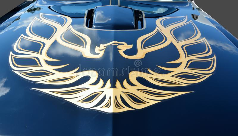Firebird on car hood. Customized pinstripes car with firebird decal in gold on hood royalty free stock photo