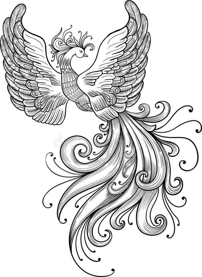 Firebird-clipart stockbilder