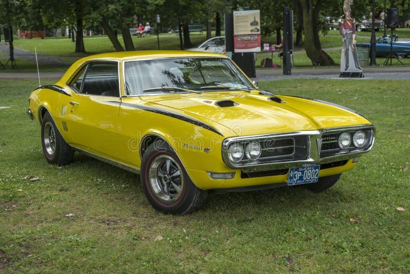 firebird Pontiac obraz royalty free