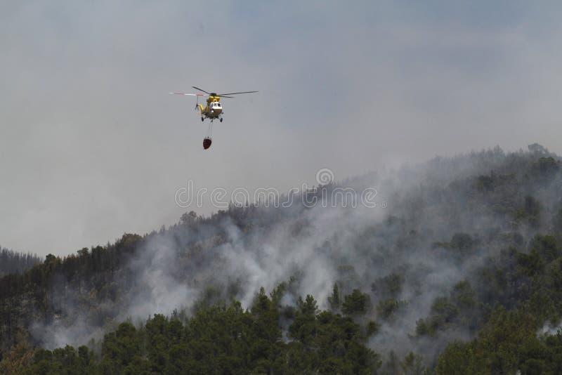 Firefight zrzutu śmigłowcowa woda nad ogieniem na lesie obraz stock