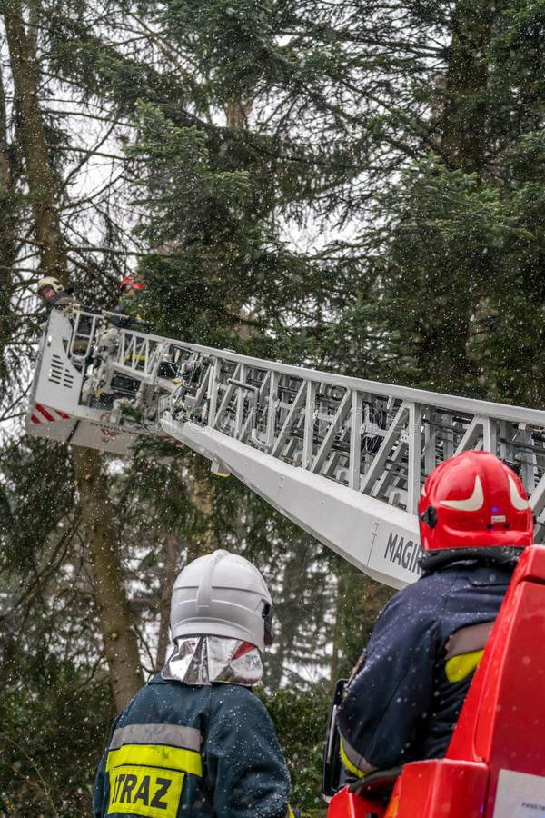 Firefighters cutting branches of a tree. Firefighters on the extendable crane are cutting branches of a tree for safety reasons after heavy snowfall in Karpacz royalty free stock images