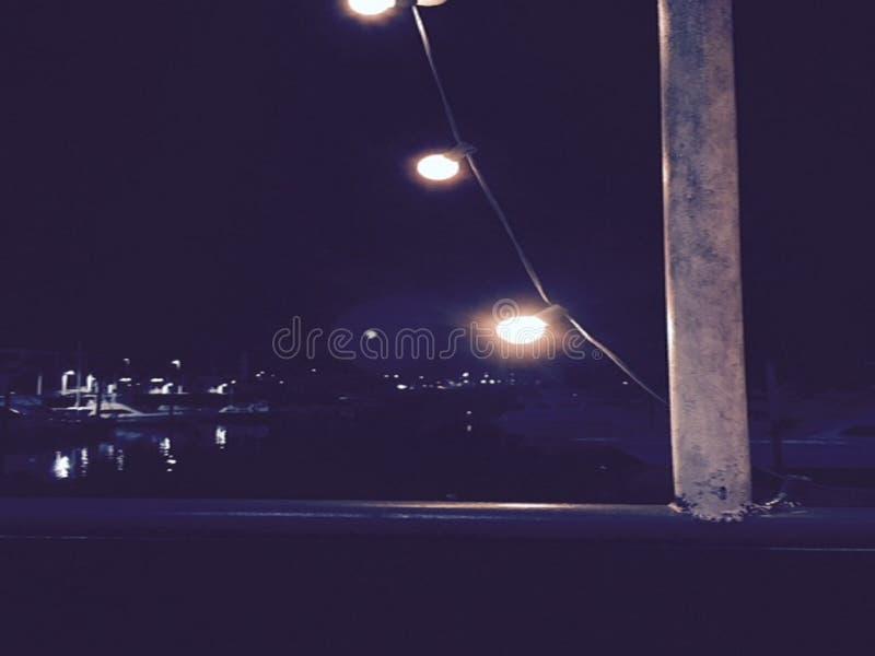 fireflies royalty-vrije stock fotografie