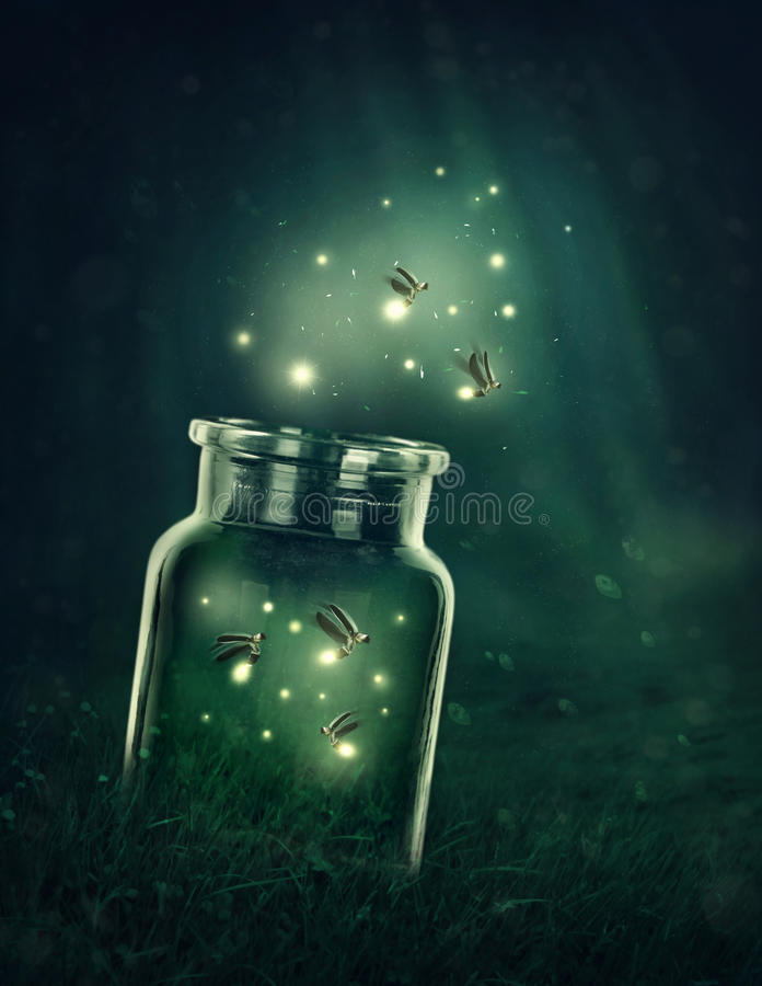 Download Fireflies Leaving The Glass Stock Illustration - Illustration of fairytale, fairy: 91127763
