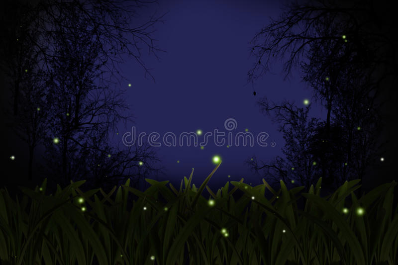 Download Firefly. stock photo. Image of forest, haze, classic - 19155086